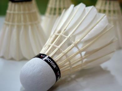 blog badminton-659910_960_720