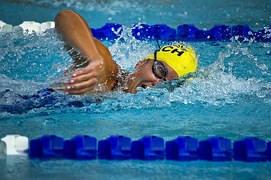 blog swimming-78112__180